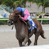 She's Incredible wins the 2016 Florida Sire Series - Meadow Star Stakes.<br /> Coglianese Photos/Kenny Martin