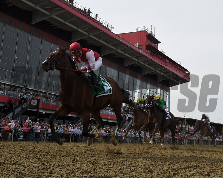 Go Maggie Go wins the 92nd running of The Black Eyed Susan at Pimlico Race Course May 20, 2016. Photo by Skip Dickstein