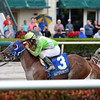 Lirica wins the 2016 Hut Hut Stakes<br /> Coglianese Photos/Andie Biancone