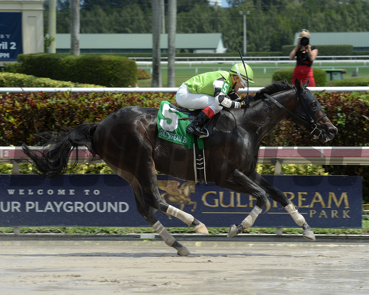 Valid wins the 2016 Skip Away Stakes.<br /> Coglianese Photos/Leslie Martin