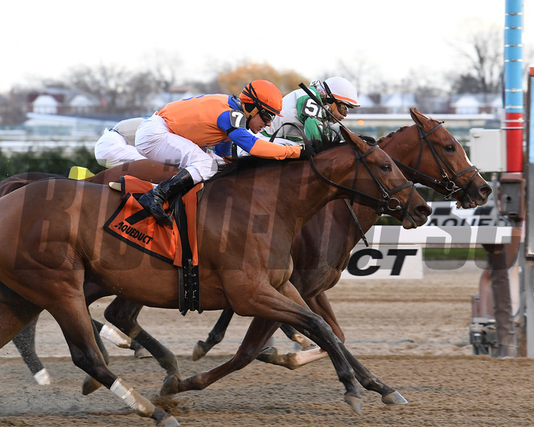 Highway Star wins the 2016 Go for Wand<br /> Coglianese Photos/Robert Mauhar