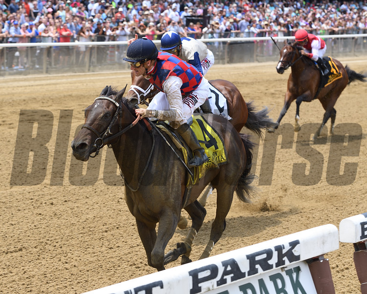Carina Mia wins the 2016 Acorn Stakes.<br /> Coglianese Photos/Chelsea Durand