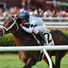 Made You Look wins the With Anticipation Stakes at Saratoga Aug. 31.<br /> Coglianese Photo/Chelsea Durand