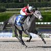 Sweetontheladies wins the 2016 Juvenile Sprint Stakes<br /> Coglianese Photos/Lauren King