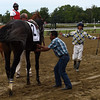 Jockey Jose Ortiz gets a lift back to Laoban after the win and broke his maiden in the 53rd running of the Jim Dandy at Saratoga 7/30/16.  Photo by Skip Dickstein
