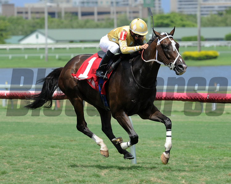 Diamond Bachelor wins the 2016 The Vid Stakes.<br /> Coglianese Photos/Lauren King
