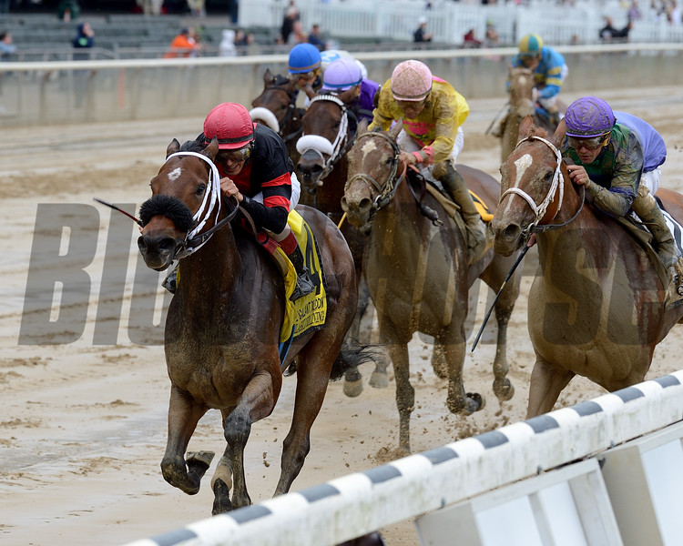 Paulassilverlining wins the 2016 Gallant Bloom Handicap.<br /> Coglianese Photos/Chelsea Durand
