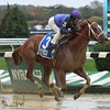 Quezon wins the 2016 Iroquois<br /> Coglianese Photos