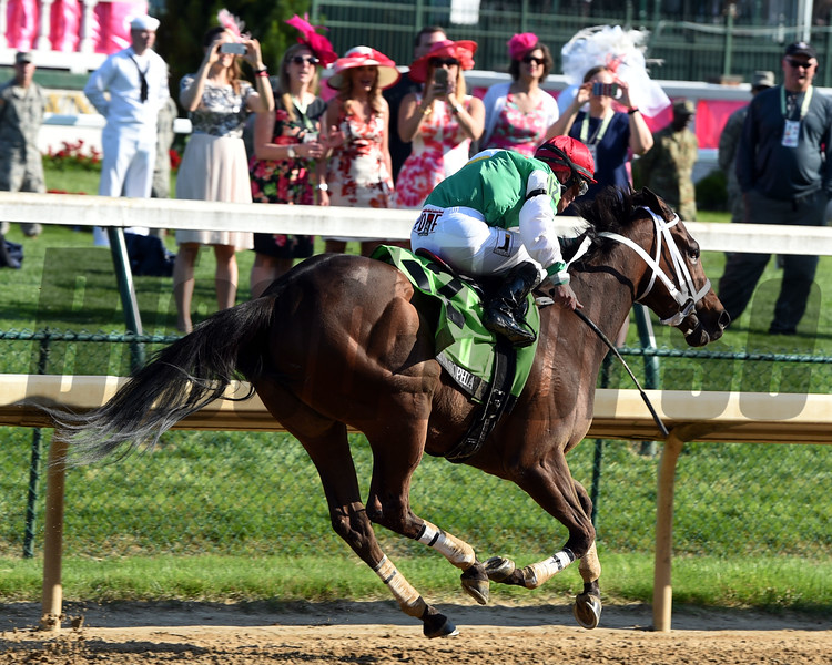 Cathryn Sophia wins the 2016 Kentucky Oaks    <br /> Dave Harmon