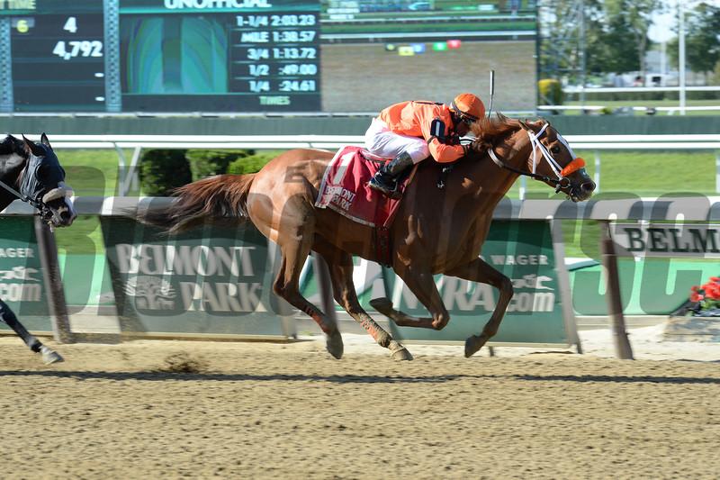 Turco Bravo wins the 2016 Flat Out Stakes.    <br />  Coglianese Photos
