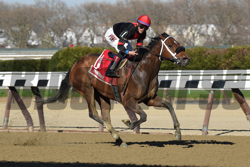 Paulassilverlining wins the Distaff Handicap (gr. III) at Aqueduct April 17, 2016.<br /> Coglianese Photos
