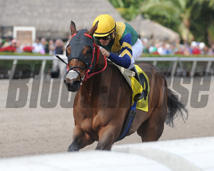 Shaft of Light wins the 2016 Claiming Crown Rapid Transit<br /> Coglianese Photos/Kenny Martin