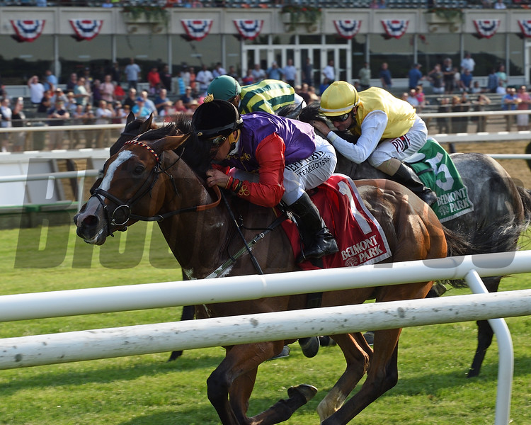 Call To Mind wins the 2018 Belmont Gold Cup Invitational<br /> Coglianese Photos/Chelsea Durand