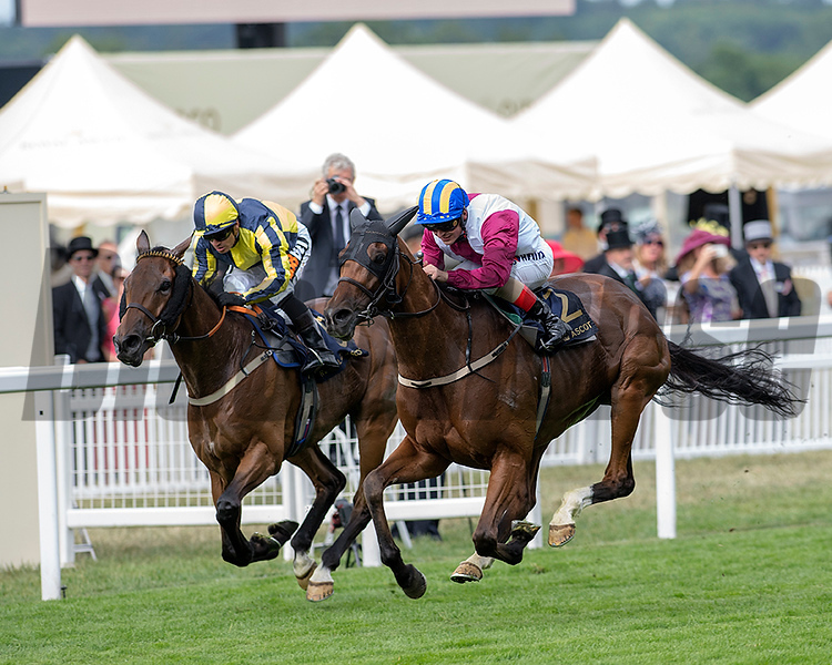 Lagostvegas, Andrea Atzeni, win the Ascot Stakes, Ascot Race Course, Ascot, UK, 6/19/18. Photo: Mathea Kelley