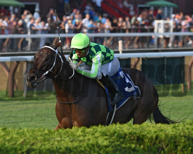 Chanteline wins the Smart N Fancy Stakes at Saratoga Sunday, August 28, 2018. Photo: Coglianese Photos/Chelsea Durand