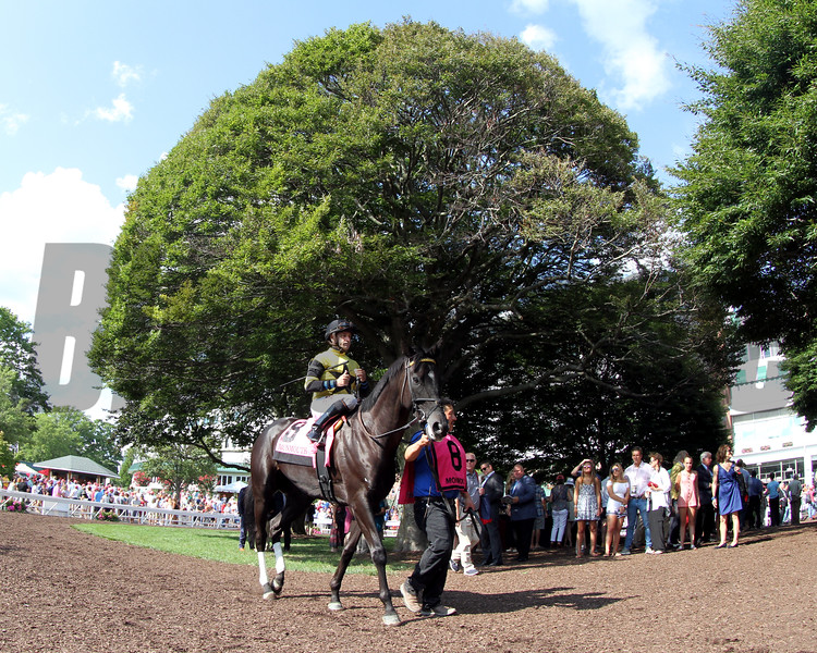 Berned Molly Pitcher Monmouth Park Chad B. Harmon