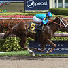Strike Power wins the 2018 Swale Stakes<br /> Coglianese Photos/Leslie Martin