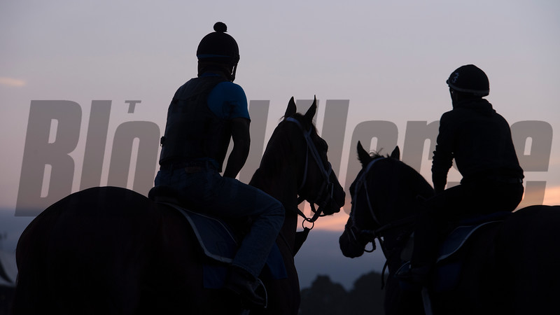 The sun rises on the main track at the Saratoga Race Course Wednesday Aug. 15, 2018 in Saratoga Springs, N.Y.  Photo by Skip Dickstein