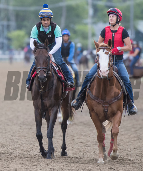 Done Deal with exercise rider Carlos Deyand, left goes out with Assistant trainer Tracy Wilkes Wednesday July 25, 2018 at the Saratoga Race Course.  Photo by Skip Dickstein