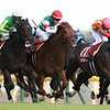 Moonquake wins the 2018 Grade 2 Keio Hai Spring Cup<br /> Masakazu Takahashi Photo