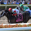 Tommy Macho wins the 2018 Fred W. Hooper Stakes<br /> Coglianese Photos/Lauren King