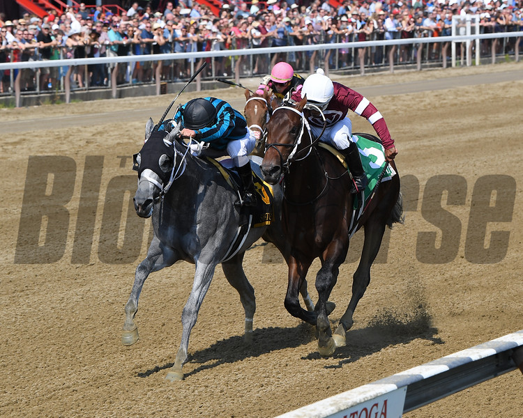 Dugout wins the 2018 Funny Cide Stakes<br /> Coglianese Photos/Chelsea Durand