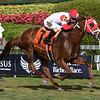 Oscar Nominated wins the W. L. McKnight Handicap<br /> Coglianese Photos