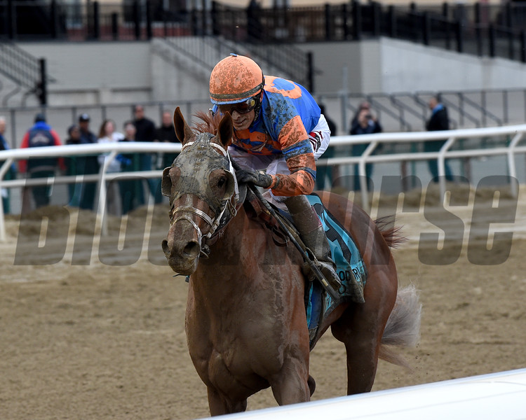 Vino Rosso wins the 2018 Wood Memorial<br /> Coglianese Photos/Chelsea Durand