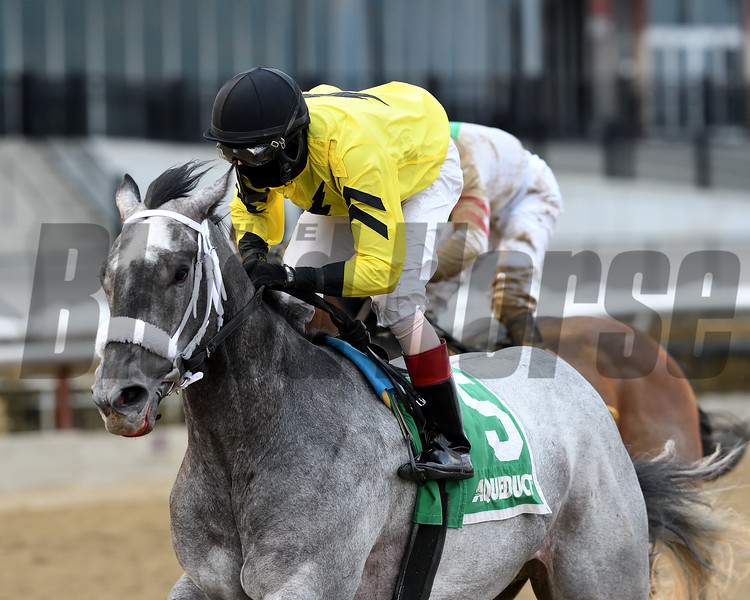 Skyler's Scramjet, Trevor McCarthy, Tom Fool Handicap, G3, Aqueduct Racetrack, March 10 2018