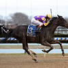 Midnight Disguise wins the 2018 Busher Stakes<br /> Coglianese Photos/Chelsea Durand