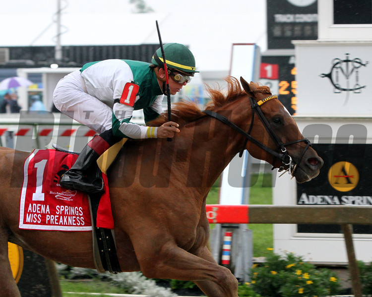 Happy Like a Fool Tyler Gaffalione Miss Preakness Chad B. Harmon