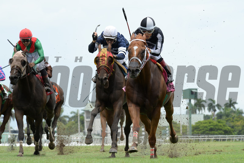 Pay Any Price wins the 2018 Bob Umphrey Turf Sprint<br /> Coglianese Photos