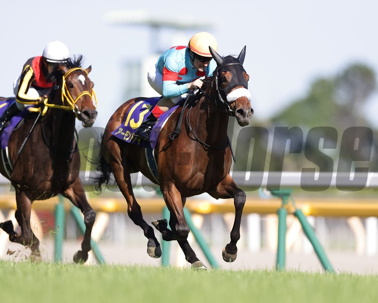 Almond Eye; Yushun Himba; Japanese Oaks; G1; Tokyo Racecourse; May 20; 2018