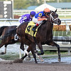 Noble Indy - AOC, Gulfstream Park, January 11, 2018<br /> Coglianese Photos/Lauren King