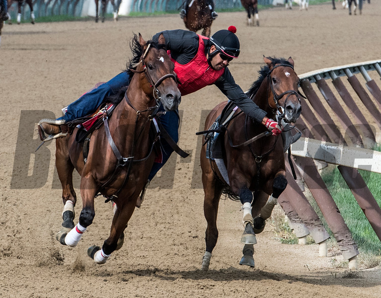 NYRA Outrider Ivan San Juan stops a Chad Brown trainee who unseated his exercise rider on the main track at the Saratoga Race Course Monday morning July 30, 2018 in Saratoga Springs, N.Y.   Photo by Skip Dickstein