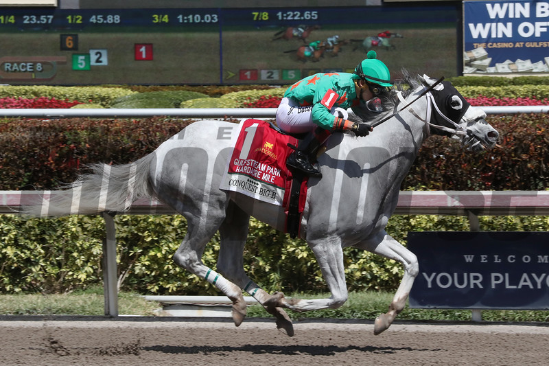 Conquest Big E wins the 2018 Gulfstream Park Hardacre Mile<br /> Coglianese Photos/Ashley Blum