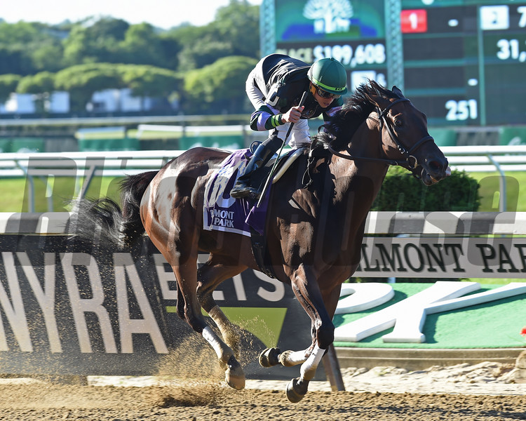 Diversify wins the Suburban Stakes at Belmont Park Saturday, July 7, 2018. Photo: Coglianese Photos