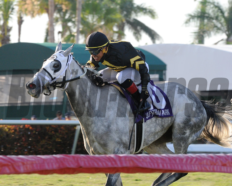 Susie Bee, Reylu Gutierrez, Powder Break Stakes, $75,000, Gulfstream Park, April 28, 2018