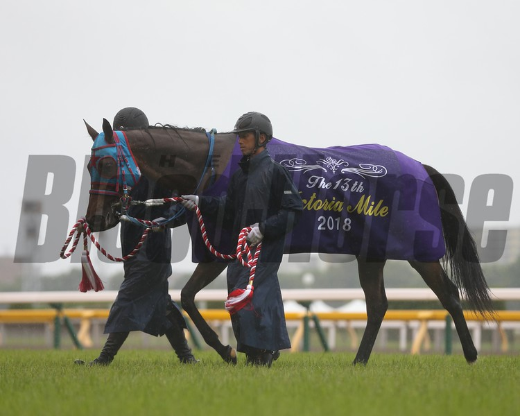 Jour Polaire, Victoria Mile, G1, Tokyo Racecourse, May 13, 2018