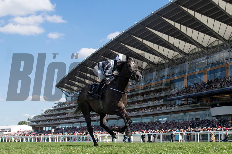 Alpha Centauri; Colm O'Donoghue; win the G1 Coronation Stakes; Royal Ascot; Ascot Race Course; Ascot; UK; 6-22-18; Photo by Mathea Kelley