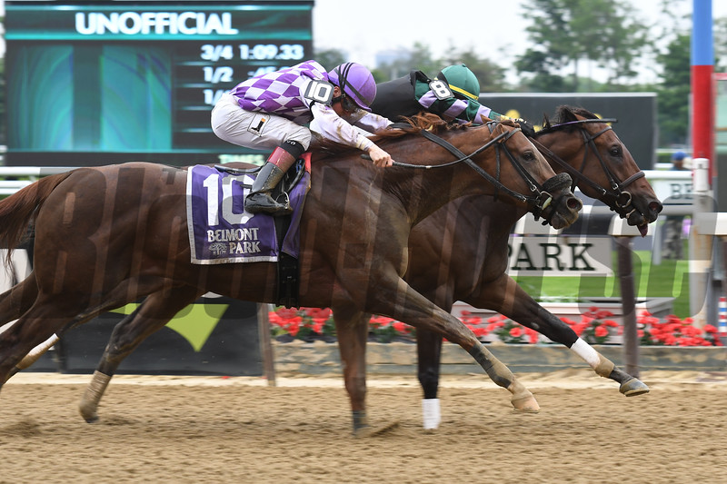 Diversify wins the 2018 Commentator Stakes at Belmont Park. Photo: Coglianese/Elsa Lorieul
