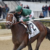 Army Mule wins the 2018 Carter<br /> Coglianese Photos/Chelsea Durand