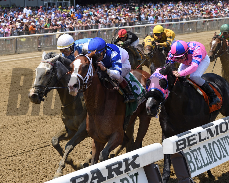 Prince Lucky wins 2018 Easy Goer Stakes at Belmont Park June 9, 2018. Photo: Coglianese Photos/Chelsea Durand