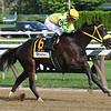 Tricky Escape wins the Waya Stakes at Saratoga Sunday, August 12, 2018. Photo: Coglianese Photo