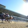 Limousine Liberal, Jose Ortiz, Belmont Sprint Championship Stakes; G2; Belmont Park; July 7; 2018