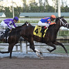 Noble Indy - AOC, Gulfstream Park, January 11, 2018<br /> Coglianese Photos/Leslie Martin