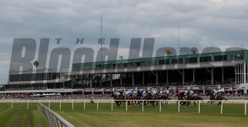 Racing @  Tampa Bay Derby  . @ Tampa Bay Downs. March10 2018<br /> © Joe DiOrio/Winningimages.biz