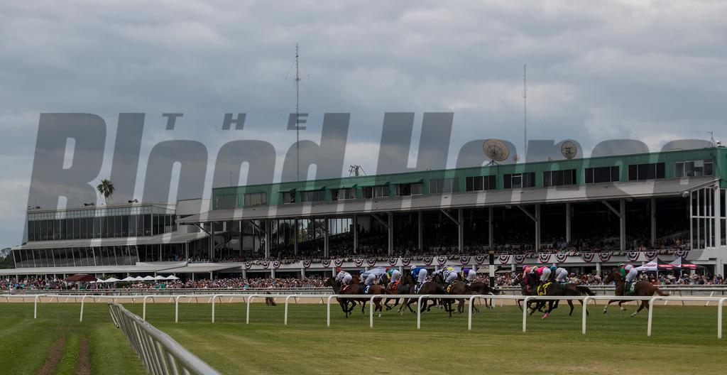 Racing @  Tampa Bay Derby  . @ Tampa Bay Downs. March10 2018<br /> © Joe DiOrio/Winningimages.biz
