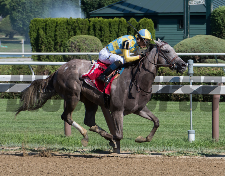 Catherinethegreat with jockey Jose Ortiz wins the 100th running of The Schuylerville at the Saratoga Race Course Friday July 20, 2018in Saratoga Springs, N.Y. Photo by Skip Dickstein