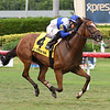 Little Chesney wins the 2018 Jupiter Beach Stakes	<br /> Coglianese Photos/Lauren King
